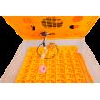 NOVÝ MODEL - Automatická líheň s regulací vlhkosti WQ-56A pro 56 vajec. S prosvětlovačkou. DÁREK ZDARMA