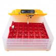 NOVÝ MODEL - Automatická líheň s regulací vlhkosti WQ-36B pro 36 velkých vajec / 144 křepelčích. S prosvětlovačkou. DÁREK ZDARMA