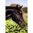 Uzdečka Standard velikost pony, černá