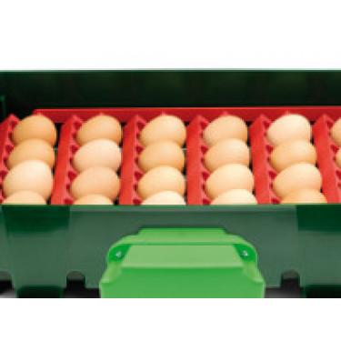 Sada držáků vajec pro líhně Covina/ET24, Real 24
